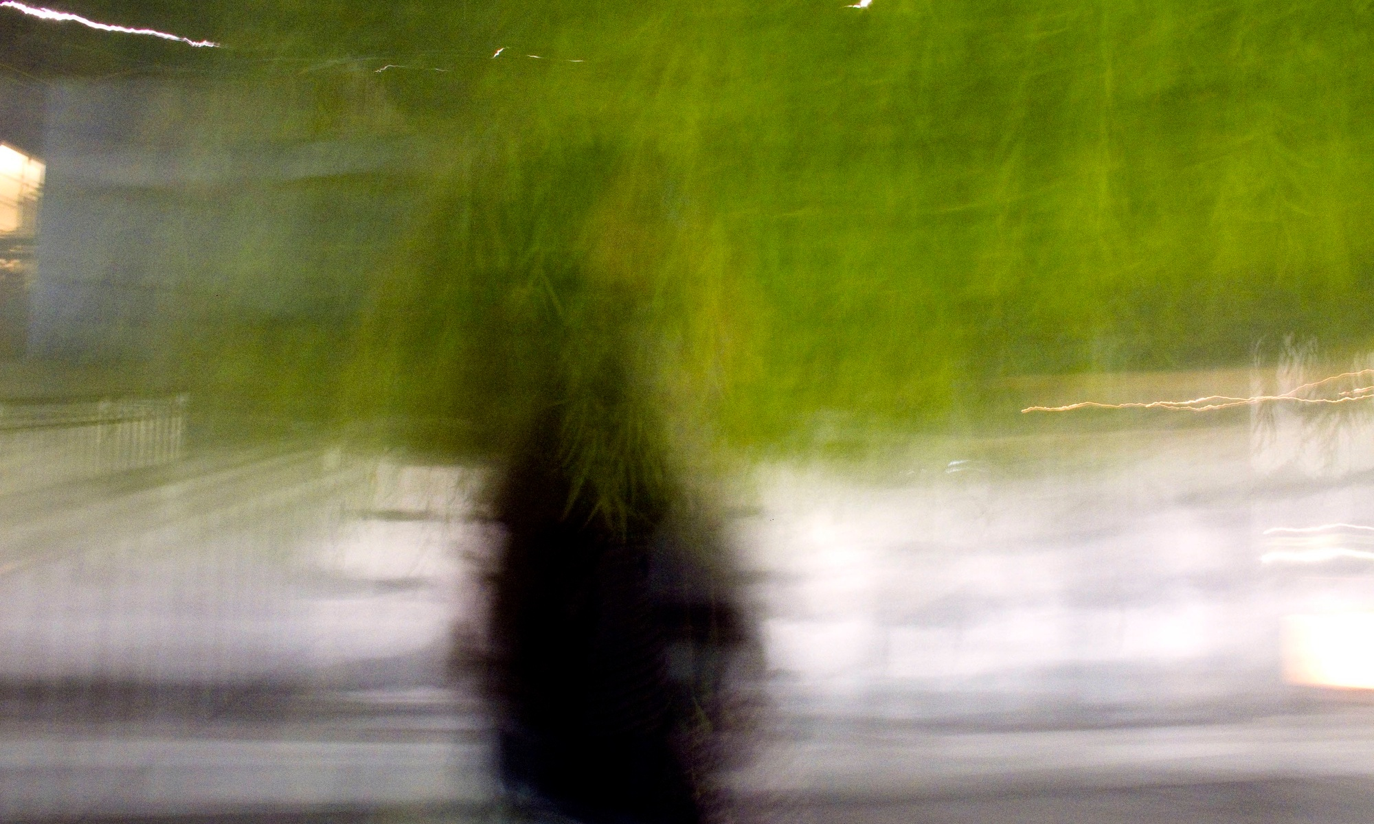 An artistically blurred light portrait of a figure standing under green tree branches.