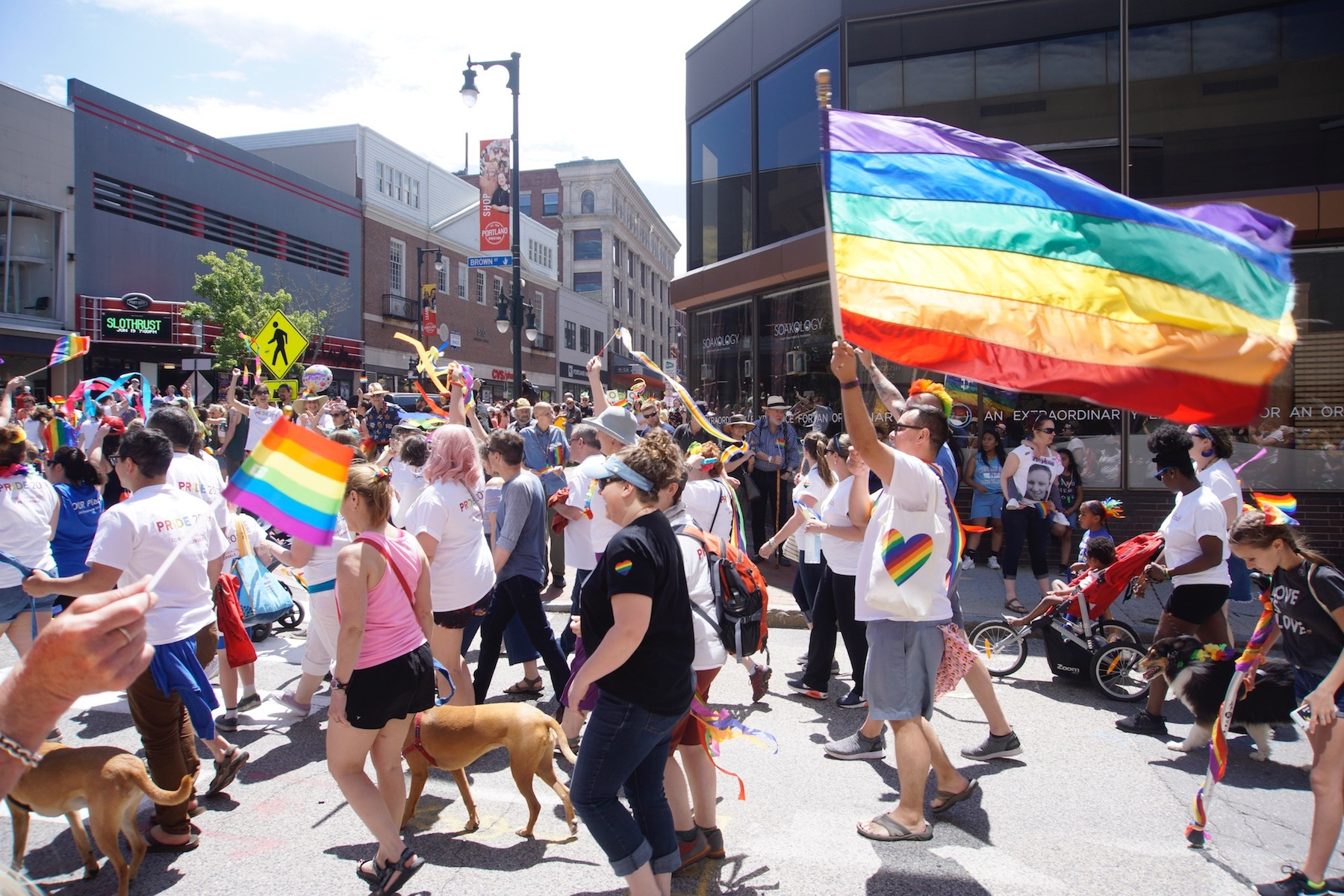 Large group of people on city street carrying pride/rainbow flags and celebrating.